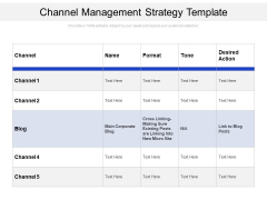 Channel Management Strategy Template Ppt PowerPoint Presentation File Visuals PDF