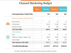 Channel Marketing Budget Ppt PowerPoint Presentation File Templates