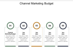 Channel Marketing Budget Ppt PowerPoint Presentation Summary Icons Cpb