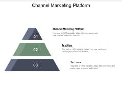 Channel Marketing Platform Ppt PowerPoint Presentation Gallery Rules Cpb