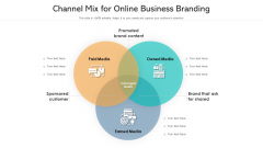 Channel Mix For Online Business Branding Ppt Model Example Topics PDF