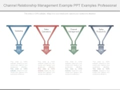 Channel Relationship Management Example Ppt Examples Professional