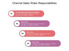 Channel Sales Roles Responsibilities Ppt PowerPoint Presentation Layouts Visual Aids Cpb