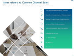 Channel Sales Taking Your Product To Market Issues Related To Common Channel Sales Inspiration PDF