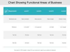 Chart Showing Functional Areas Of Business Ppt PowerPoint Presentation Layouts Graphics
