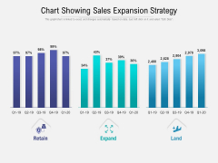Chart Showing Sales Expansion Strategy Ppt PowerPoint Presentation Styles Professional PDF