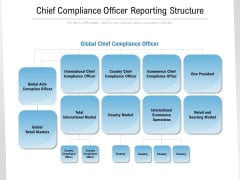 Chief Compliance Officer Reporting Structure Ppt Gallery Graphics Example PDF