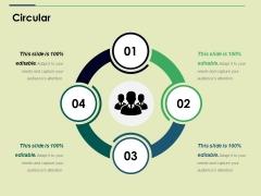 Circular Ppt PowerPoint Presentation Professional Mockup