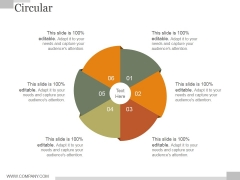 Circular Ppt PowerPoint Presentation Shapes