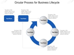 Circular Process For Business Lifecycle Ppt PowerPoint Presentation File Good PDF