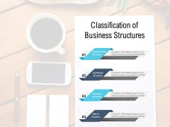 Classification Of Business Structures Ppt PowerPoint Presentation Outline Gridlines
