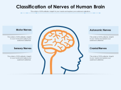 Classification Of Nerves Of Human Brain Ppt PowerPoint Presentation File Demonstration PDF