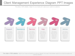 Client Management Experience Diagram Ppt Images