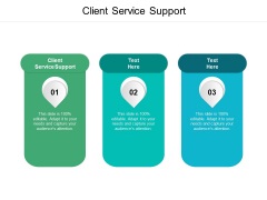 Client Service Support Ppt PowerPoint Presentation Slides Graphics Example Cpb Pdf