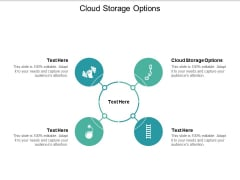 Cloud Storage Options Ppt PowerPoint Presentation Styles Example Cpb