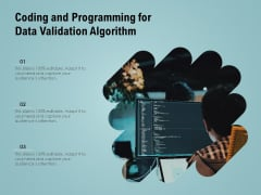 Coding And Programming For Data Validation Algorithm Ppt PowerPoint Presentation Gallery Examples PDF