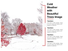 Cold Weather With Beautiful Trees Image Ppt PowerPoint Presentation File Template