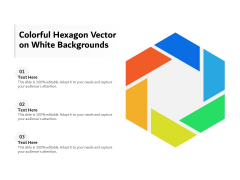 Colorful Hexagon Vector On White Backgrounds Ppt PowerPoint Presentation Gallery Slide PDF
