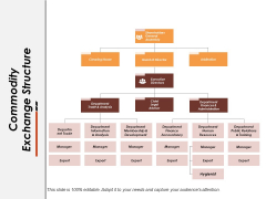 Commodity Exchange Structure Ppt PowerPoint Presentation Summary Guide