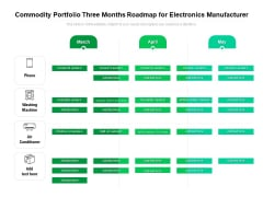 Commodity Portfolio Three Months Roadmap For Electronics Manufacturer Background