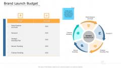 Commodity Unique Selling Proposition Brand Launch Budget Portrait PDF