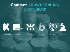 Common Crowdfunding Platforms Ppt PowerPoint Presentation Summary Elements