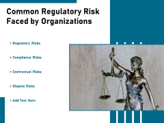Common Regulatory Risk Faced By Organizations Ppt PowerPoint Presentation Infographic Template Slides PDF