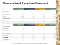 Common Size Balance Sheet Statement Ppt Powerpoint Presentation Ideas Background Image