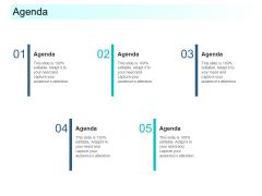 Community Capitalization Pitch Deck Agenda Diagrams Pdf