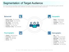 Community Capitalization Pitch Deck Segmentation Of Target Audience Slides Pdf
