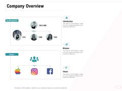 Company Amalgamation Company Overview Ppt Styles Example File PDF