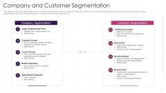 Company And Customer Segmentation Graphics PDF
