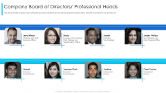 Company Board Of Directors Professional Heads Ppt Layouts Ideas PDF