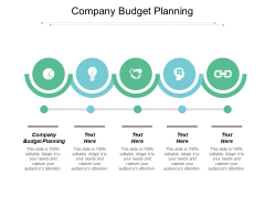 Company Budget Planning Ppt PowerPoint Presentation Pictures Example File Cpb