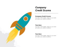 Company Credit Scores Ppt PowerPoint Presentation Infographics Files Cpb