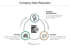 Company Debt Reduction Ppt PowerPoint Presentation Professional Background Images