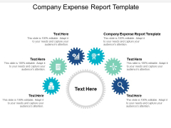 Company Expense Report Template Ppt PowerPoint Presentation Infographics Graphics Tutorials Cpb