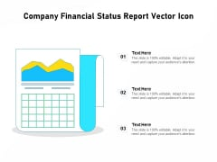 Company Financial Status Report Vector Icon Ppt PowerPoint Presentation Layouts Show PDF