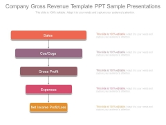 Company Gross Revenue Template Ppt Sample Presentations