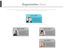 Company Hierarchy Structure Design Powerpoint Slides