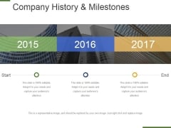 Company History And Milestones Template 2 Ppt PowerPoint Presentation Model Example