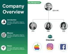 Company Overview Ppt PowerPoint Presentation Infographics Elements