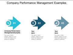 Company Performance Management Examples Ppt PowerPoint Presentation Summary Infographics Cpb