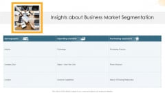Company Process Handbook Insights About Business Market Segmentation Ppt File Ideas PDF