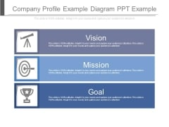 Company Profile Example Diagram Ppt Example