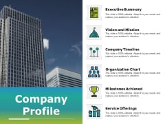 Company Profile Ppt PowerPoint Presentation Infographics Information