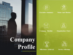 Company Profile Ppt PowerPoint Presentation Professional Themes