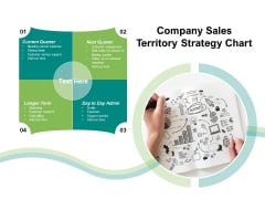 Company Sales Territory Strategy Chart Ppt PowerPoint Presentation Icon Gallery PDF
