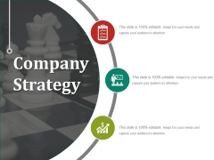 Company Strategy Ppt PowerPoint Presentation Infographic Template Example