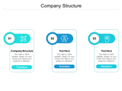 Company Structure Ppt PowerPoint Presentation Outline Inspiration Cpb